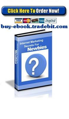 Product picture Internet Marketing Secrets For Newbies